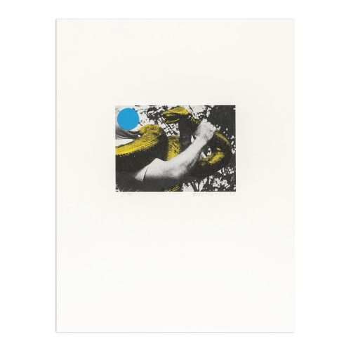 Man with Snake (Blue and Yellow) by John Baldessari at