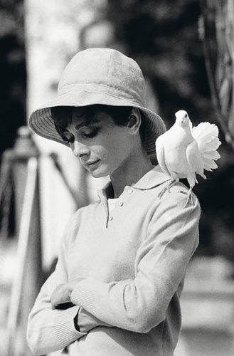 Hepburn With Dove Limited Edition Signed by Terry O'Neill at