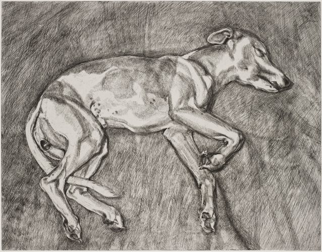Eli by Lucian Freud at