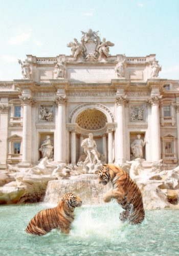 Trevi Tigers – Signed Limited Edition Archival Pigment Print by Paul Fuentes at Gallery Prints