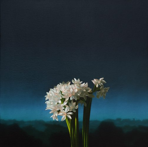 Narcissus Against Evening Sky by Bruce Cohen at Leslie Sacks Gallery (IFPDA)