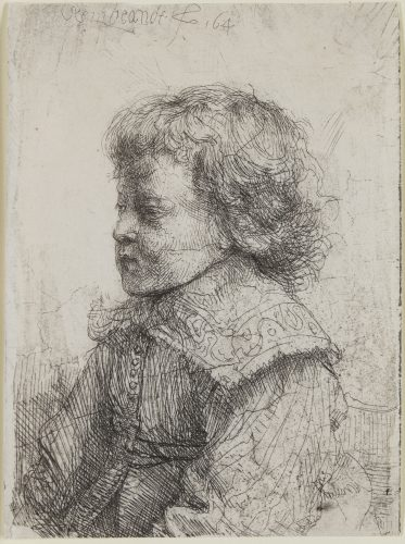 Portrait of a Boy in Profile by Harmensz van Rijn Rembrandt at