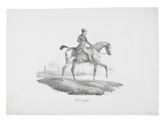 Cheval anglais (An English Horse) by Théodore Géricault at