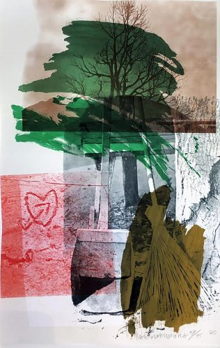 Earth Day by Robert Rauschenberg at