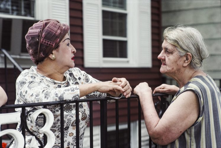 New Jersey Neighbours by Barbara Alper at