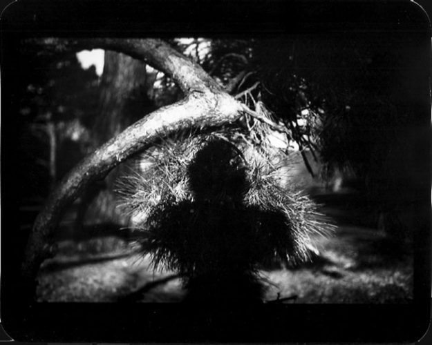Untitled (Shadow #08) by Giacomo Brunelli at