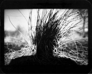 Untitled (Shadow #21) by Giacomo Brunelli at FEUTEU