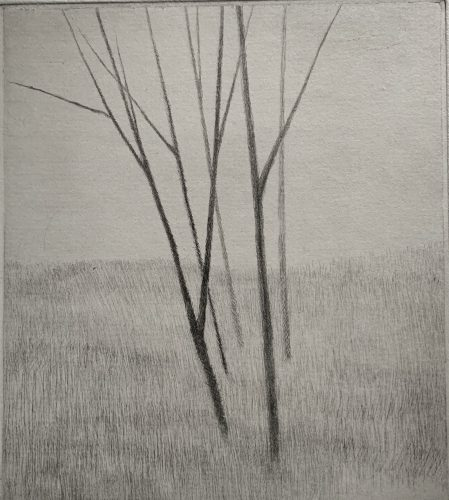 Slope w/ five trees by Robert Kipniss at