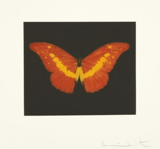 To Love (Red/Yellow Butterfly) by Damien Hirst at Osborne Samuel Gallery