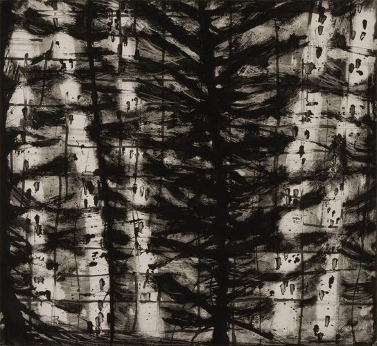 Birches (B&W) by Katherine Bowling at