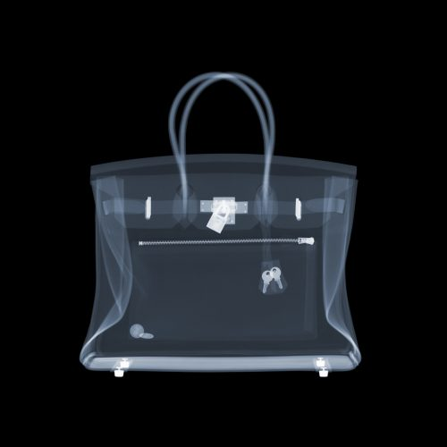 Hermes Birkin Bag by Nick Veasey at