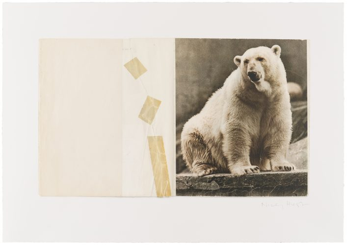 Nicky Hirst – Conservation by The Help Portfolio at