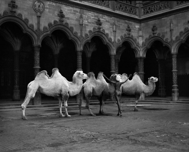 The Herder by Marc Lagrange at