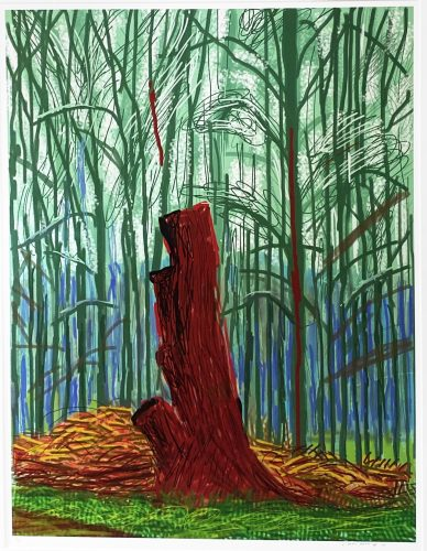 The Arrival of Spring in Woldgate, East Yorkshire in 2011 (twenty eleven) – 25th February 2011 by David Hockney at