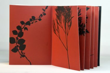 Herbier by Jan Hendrix at Anemona Editores