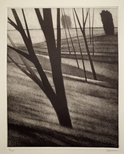 Slope w / seven trees by Robert Kipniss at