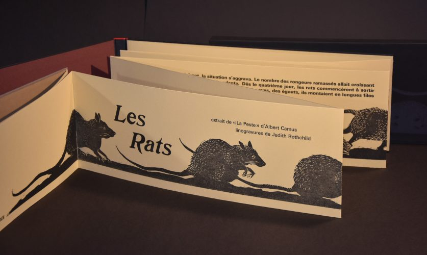 Les Rats by Judith Rothchild at