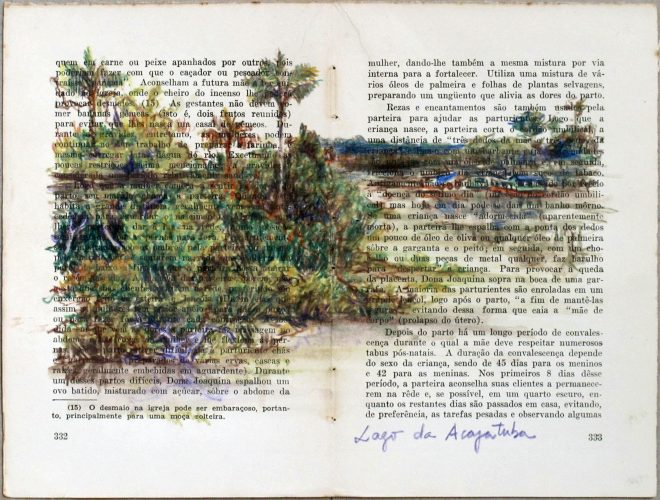 Acajatuba Lagoon (Rio Negro series) by Teresa Berlinck at