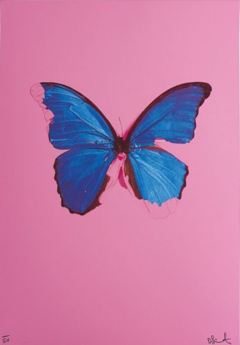 Blue Butterfly by Damien Hirst at Rhodes Contemporary Art