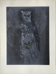 Great Horned Owl by Jim Dine at Leslie Sacks Gallery (IFPDA)