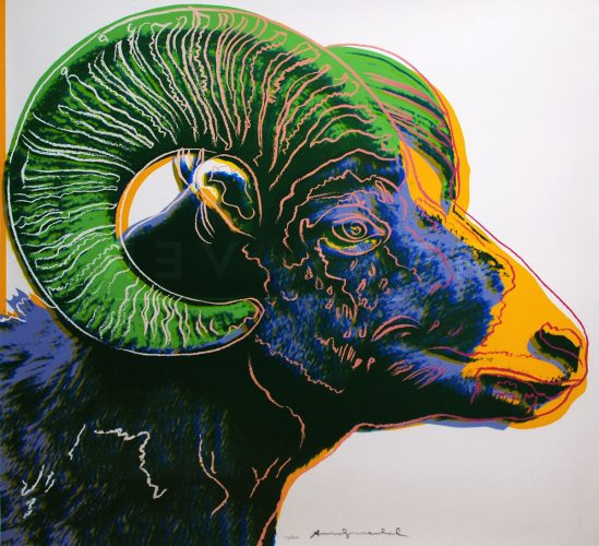 Big Horn Ram, from Endangered Species by Andy Warhol at