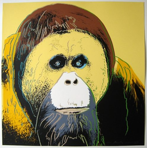 Orangutan, from Endangered Species by Andy Warhol at