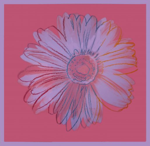 Daisy (FS. IIIA. 37) by Andy Warhol at