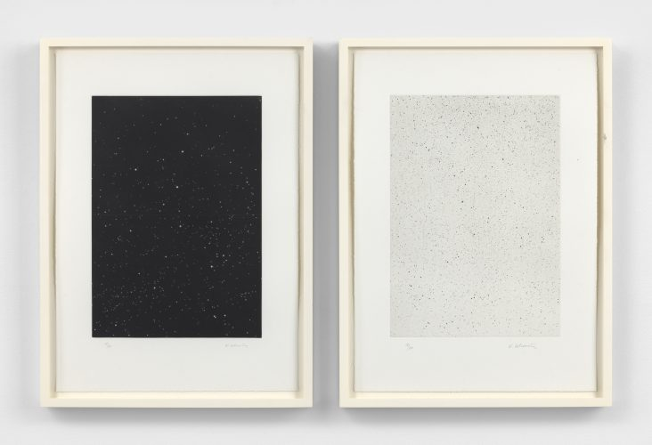 Divided Night Sky and Reverse Galaxy by Vija Celmins at