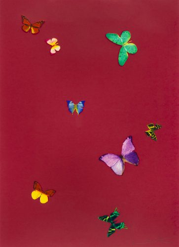 Your Smell (from The Wonder of You) by Damien Hirst at