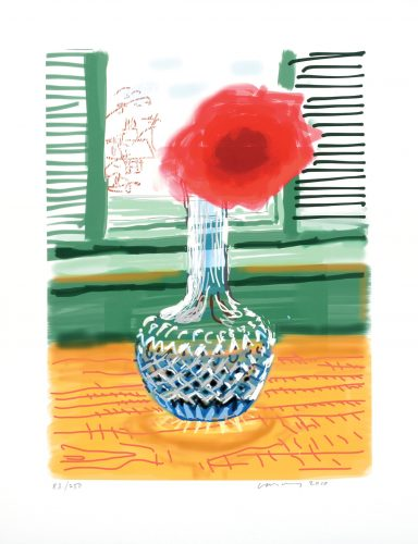 My Window with iPad drawing No. 281, 23rd July 2010. [Rose in a Glass Vase] ink-jet print. by David Hockney at
