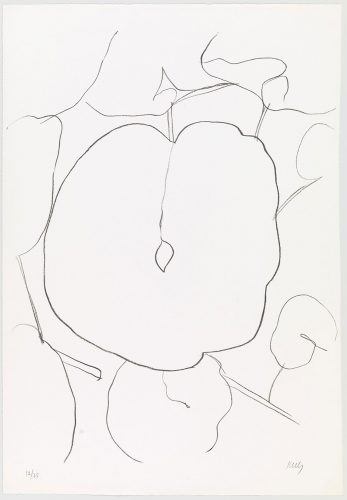 Melon Leaf (Feuille de melon) from Suite of Plant Lithographs by Ellsworth Kelly at